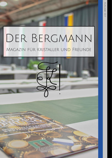 Bergmann 2017 ss